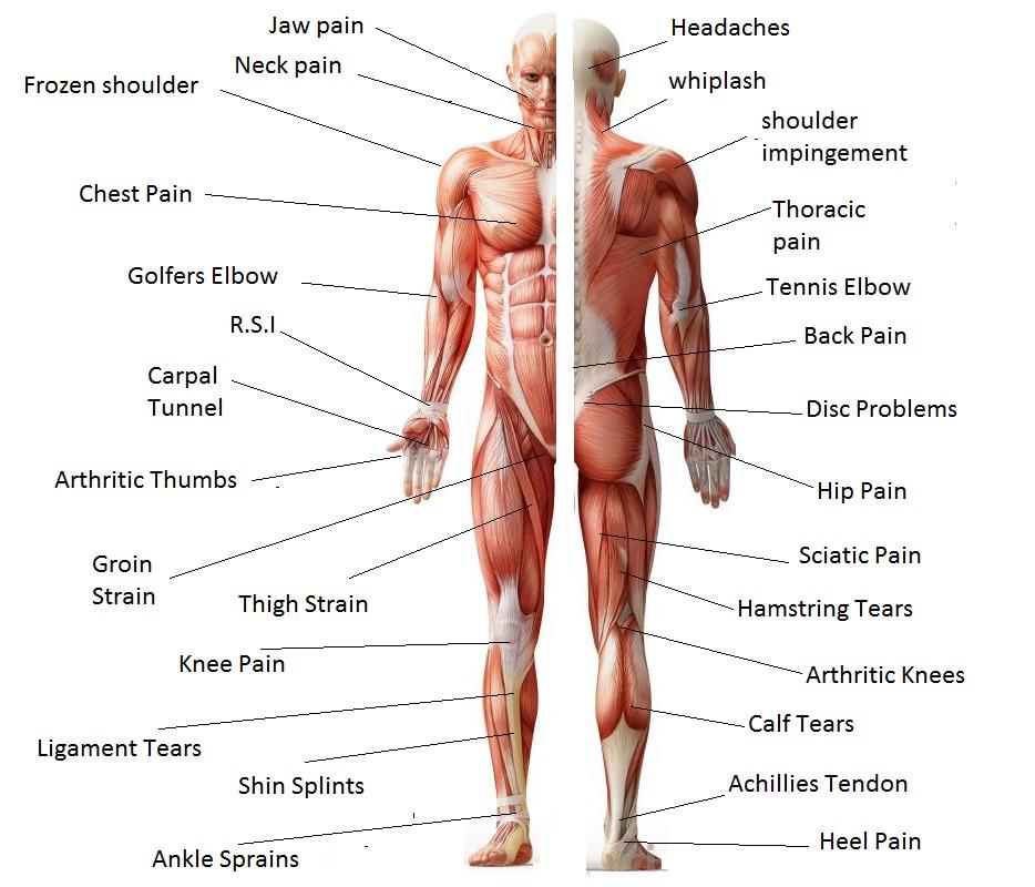 Professional Massage Health Benefits | Vineland NJ
